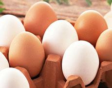 仙居土鸡蛋